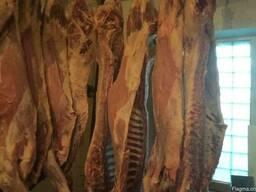 Beef, Cow, Veal / Frozen - photo 4
