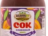 Natural juice from Kazakhstan (ire. eciq. cn 9398180201) - фото 1