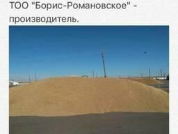 Реализуем с собственных полей на экспорт пшеницу, лен, подсо