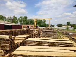 I will sell a board of an oak cut / not cut a grade 2-3-4