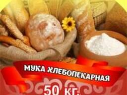 поставки пшеницы и муки