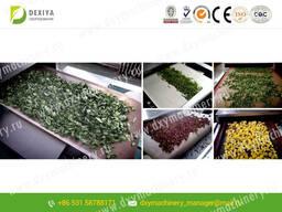 СВЧ установка для сушки растения цветочного