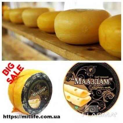 Сыр Мааздам Голанские Радомер Твердые сыры