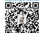 612600012208 Вкладыши коленвала weichai WP10 huatai - photo 2